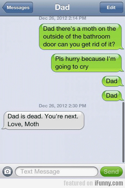 dad there's a moth on the outside of the...