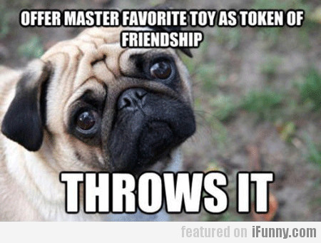 Offers Master Favorite Toy