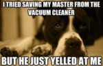 I Tried Saving My Master From The Vacuum Cleaner