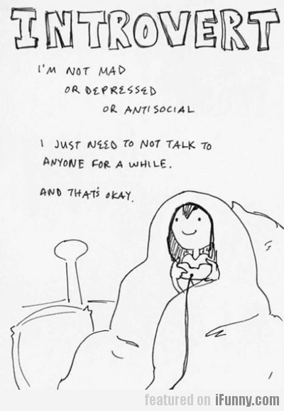 introvert, i'm not mad or depressed or antisocial
