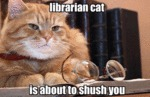 Librarian Cat, Is About To Shush You