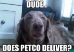 Dude... Does Petco Deliver?