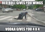 Red Bull Gives You Wings, Vodka Gives You...