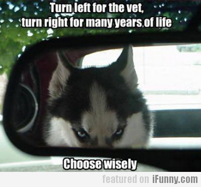 Turn Left For The Vet, Turn Right For Many...