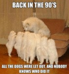 Back In The 90s, All The Dogs Were Let Out