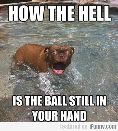 How The Hell Is The Ball Still In Your Hand?