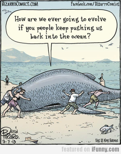 How Are We Ever Going To Evolve?