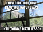 I Never Noticed How Beautiful Nature Was...