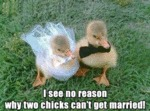 I See No Reason Why Two Chicks Can't Get Married!