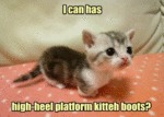 I Can Has High-heel Platform Kitteh Boots?