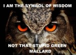 I Am The Symbol Of Wisdom, Not That Stupid...