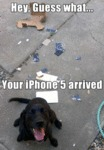 Hey, Guess What.. Your Iphone 5 Arrived