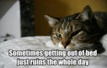 Sometimes Getting Out Of The Bed...