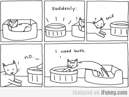 Suddenly, Cat Needs Both