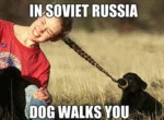 In Soviet Russia, Dog Walks You