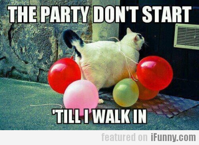 The party don't start 'till I walk in