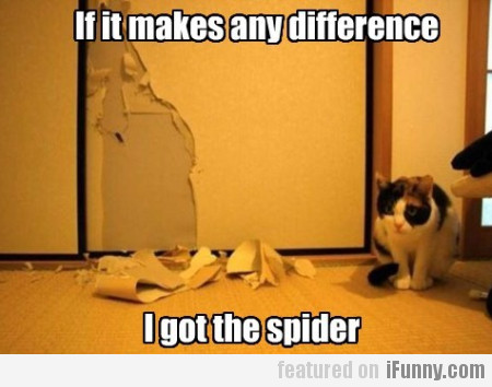 If It Makes Any Difference, I Got The Spider