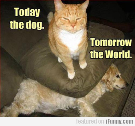 Today The Dog, Tommorow The World