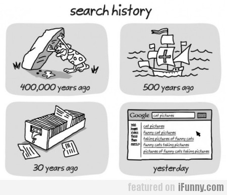 The evolution of search history
