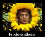 Frodo-synthesis