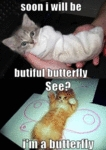 Soon I Will Be Butiful Butterfly