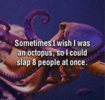 Sometimes I Wish I Was An Octopus So I Could...