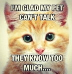 I'm Glad My Pet Can't Talk...