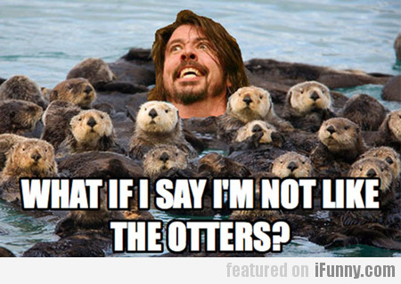 What If I Say I'm Not Like The Otters?
