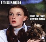 I Miss Kansas, I Miss The Rains Down In Africa