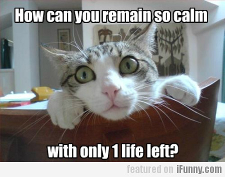 How can you remain so calm with only 1 life left?