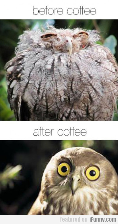 Before Coffee Vs After Coffee