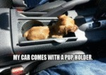 My Car Comes With A Pup Holder
