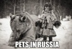 Pets In Russia