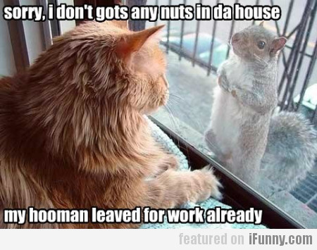 Sorry, I Don't Gots Any Nuts In Da House
