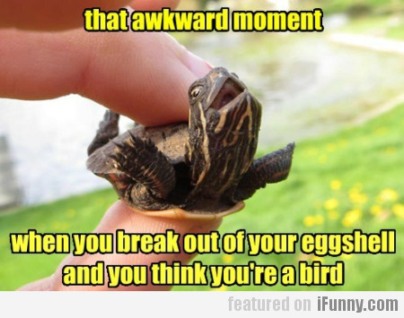 That Awkward Moment When You Break Out Of...