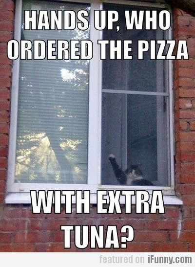 Hands up, who ordered the pizza with extra tuna!