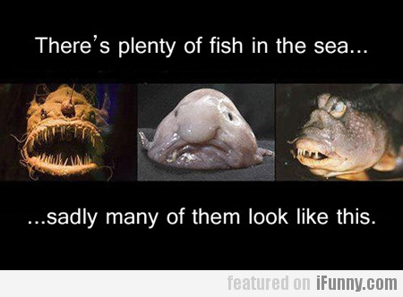there are plenty of fish in the sea...