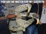 You Are No Match For My Sloth Fu