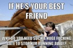 If He's Your Best Friend...