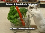 Delaney N. Bunnie Had A Dirty Secret