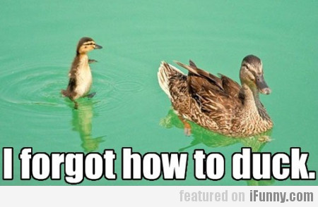 I Forgot How To Duck