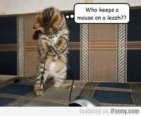 Who Keeps A Mouse On A Leash?
