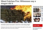 Weed Catches Fire: Witnesses Say A Dragon Did It