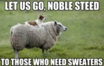 Let Us Go, Noble Steed To Those Who Need Sweaters