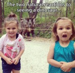 The Two Natural Reactions To Seeing A Dinosaur...