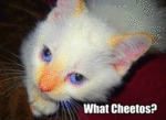 What Cheetos?