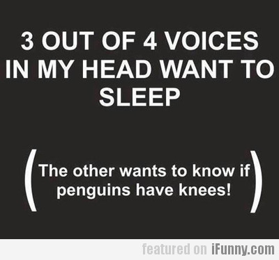 3 Out Of 4 Voices In My Head...