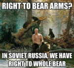 Right To Bear Arms?
