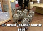 We Heard You Have Tootsie Pops