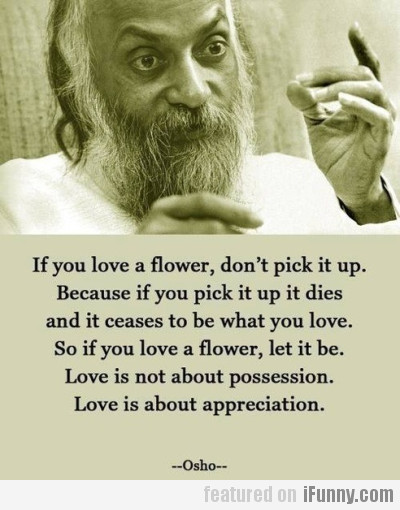If You Love A Flower, Don't Pick It Up.